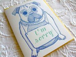 Pug sorry