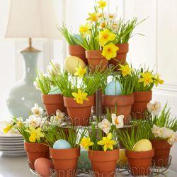 Flower eggpots
